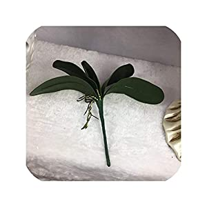 1Pcs phalaenopsis Leaf Artificial Plant Leaf Decorative Flowers Auxiliary Material Flower Decoration Orchid Leaves 23