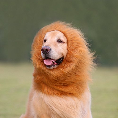 EVINIS Large Pet Dog Cat Lion Wigs Mane Hair Festival Party Fancy Dress Clothes Costume,Lion neckerchief Collar Wigs Mane Hair Labrador Golden retriever lanmu ()