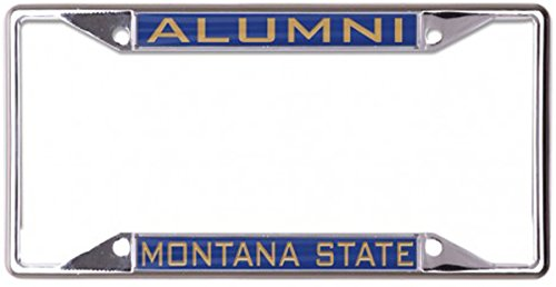 Montana State University Alumni Premium License Plate Frame, 6 x 12 inches, 4 Mount Holes, Blue ()