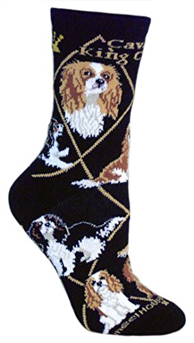 Cavalier Kings Charles Spaniel Puppy Dog Breed Animal Socks 9-11