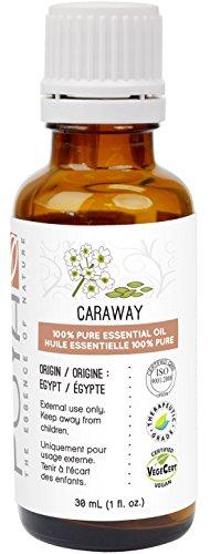 Caraway Essential Oil fl Oz