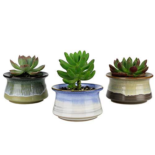 GemEwell Succulent Plant Pots 3.3 Inch Flowing Glaze Ceramic Planters, Cactus Planters, Flower Pots with Drainage Hole, Set of 3 (with Mushrooms Decors + Drain Hole mesh Pads)
