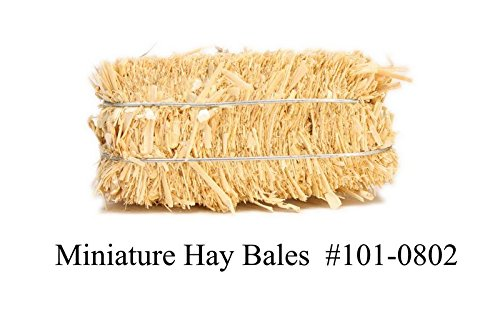 Hay Bales - Mini Floral - Real Hay for Crafting - 2'' Long - Quantity of 100#101-0802