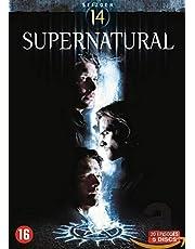 Supernatural-Saison 14 (avec Audio Francais) [DVD]