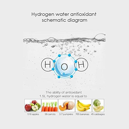 Gosoit Water Ionizer Hydrogen Alkaline Water Bottle,Hydrogen Water Generator Maker Machine ,Rechargeable Water Bottle Filter Purifier for Anti-aging ,Boost Immunity,BPA-free, White by GOSOIT (Image #3)