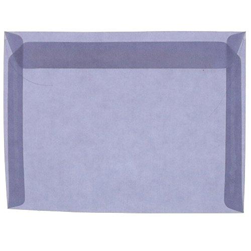 (JAM PAPER 9 x 12 Booklet Translucent Vellum Envelopes - Wisteria Purple - 25/Pack)