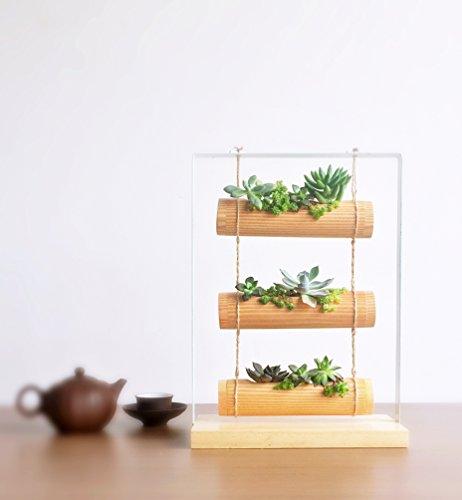 A6006 Perfect Gift - Living Art Vertical ZEN Garden Planter Succulent Cactus Small Plants Herbs Planting Cylinder System - WOOD