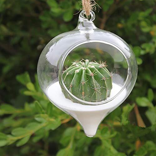 m·kvfa Clear Plant Pot Flower Hanging Vase Glass Planter Plant Terrarium Container Home Wedding Decor Garden Ornaments Plant Globes