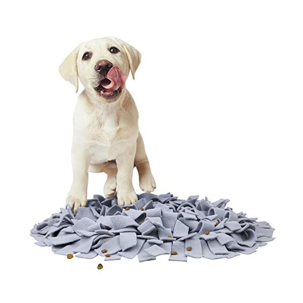 AK KYC Snuffle Mat Dogs Nosework Slow Feeding Training Play Puppy Cat Interactive Puzzle Toys Funny Foldable Blanket 7