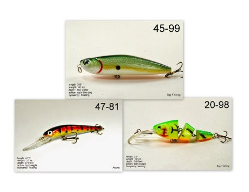 Akuna [NY] Pros' pick recommendation collection of lures for Bass, Panfish, Trout, Pike and Walleye fishing in New York(Bass 3-A) (Best Pike Fishing In New York)