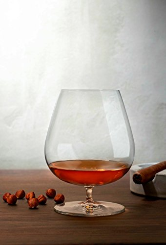 Review Hospitality Glass Brands 66128-024 Vintage Cognac, 32 oz. (Pack of 24)