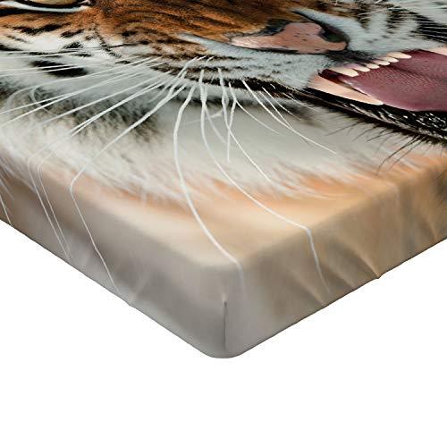 Lunarable Safari Fitted Sheet, Siberian Tiger Roar Golden Yellow Eyes Attack Predator White Background, Soft Decorative Fabric Bedding All-Round Elastic Pocket, Queen Size, Amber White