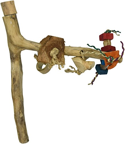 A&E CAGE COMPANY AE7001M Java Wood Branch Assorted Bird Toy, Medium