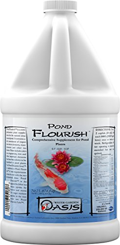 Pond Flourish Iron - 2