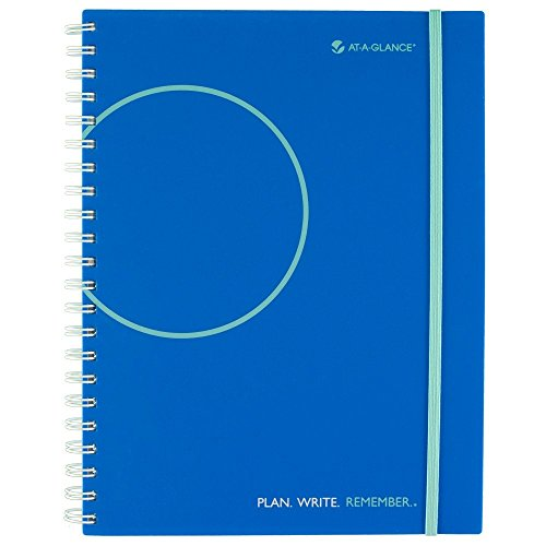 (AT-A-GLANCE Exclusive Professional Two Days Per Page Planning Notebook, Undated, 8.5 x 11 Inches, Paisley)