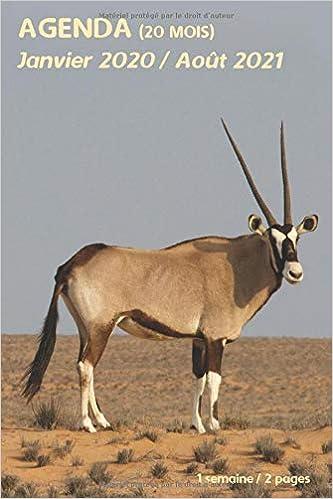 AGENDA (20 mois)   Janvier 2020 / Août 2021: antilope animaux
