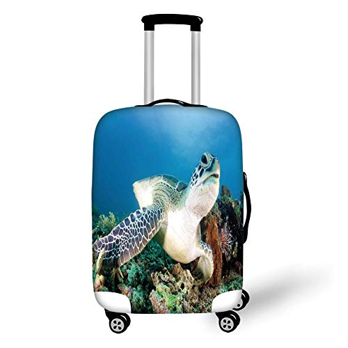 Travel Luggage Cover Suitcase Protector,Turtle,Photo of Green Turtle and Lion Fish on Tropical Coral Reef Chelonia Snorkeling,Blue Green White,for TravelL 25.9x37.8Inch