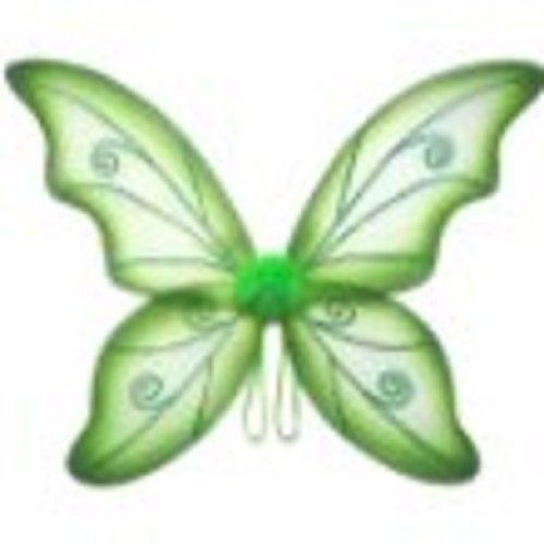 Womens Wild Fairy Wings (Green, One Size) ()