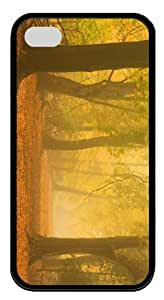 durable cover autumn mist forest road TPU Black Case for iphone 4/4S