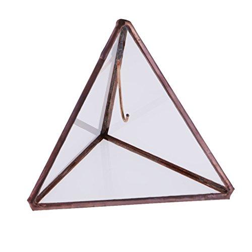 Prettyia Wedding Engagement Open Pyramid Geometric Terrarium Succulent Jewelry Box