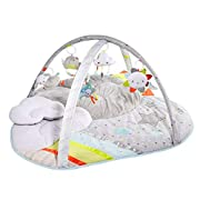 Skip Hop Silver Lining Cloud Activity Gym, Multi
