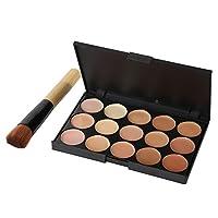 PanDaDa 15 Colors Makeup Face Foundation Concealer Contour Cream Palette + Brush+Sponge Puff Kit
