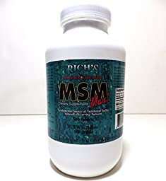 Rich\'s Maximum Strength MSM Max (500 Ct) net wt. 21.2oz, 1200mg MSM