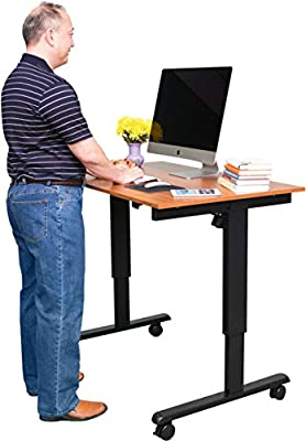 48? Electric Stand Up Desk -Adjust From Sitting to a Standing Desk in 20 Seconds