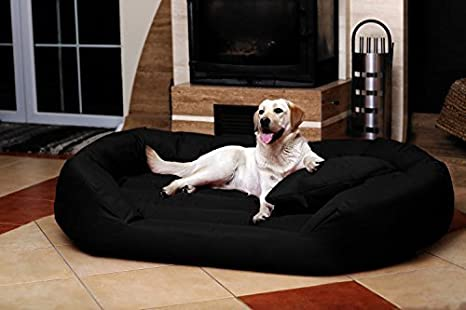 tierlando Cama para perro PHILIP Sofá para perro - Cuero artificial - difícil inflamable - XXL 140cm - Negro - Gran danés Ph5-LL-03-GB: Amazon.es: Productos ...