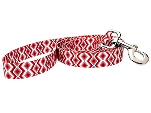 DoggyRide Fashion Dog Leash, 5-Feet, Ravishing Red Poppy, Red/Cream