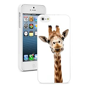 Apple iPhone 5c White 5CW236 Hard Back Case Cover Color Close Up Funny Giraffe