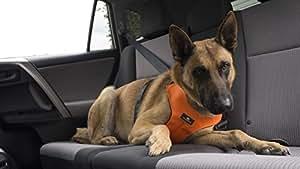 Sleepypod ClickIt Sport Crash-Tested Car Safety Dog Harness (Medium, Orange Dream)
