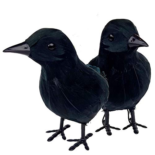 NorNovelties Black Crow Halloween Decor - 2 Pack Halloween Decorations Or Maleficent Costume -