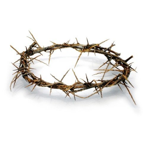 Passion of Christ Crown of Thorns/ Authentic Crown of Thorns Comes in Gift Box with Description Holy Land Imports B99999_2