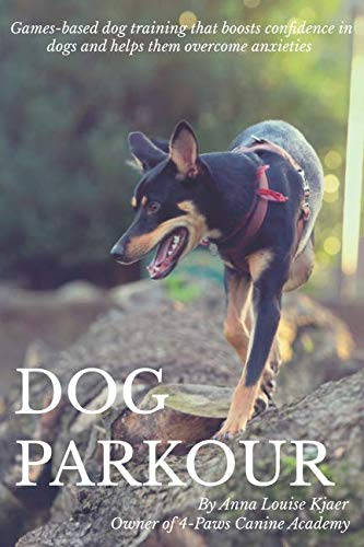 Dog Parkour: Games-based dog training that boosts confidence in dogs and helps them overcome anxieties.