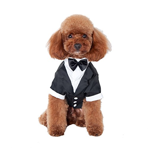 GabeFish Pets Black Wedding Jackets Suit for Dogs with Black Bow Tie Puppy Cat Formal Clothes Shirt Tuxedo Black Large