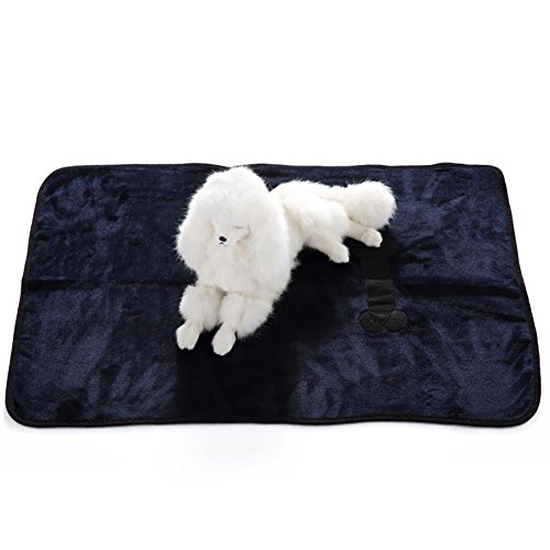 Aiweasi Lovely Cute Pet Blanket Cat Dog Mats Double Soft Warm Polyester Pet Beds House (Casual Dog Couch)