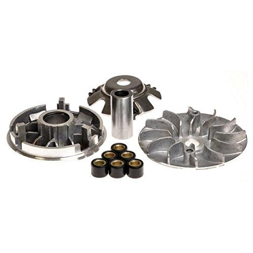 (AlveyTech Variator Assembly for 125cc & 150cc GY6 Scooter & Go-Kart Engines)