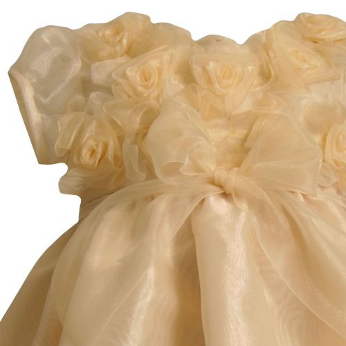 Bonnie Jean Baby Girls NEWBORN GOLD ROSETTE BUBBLE ORGANZA Special Occasion Flower Girl Pageant Party Dress-3/6M