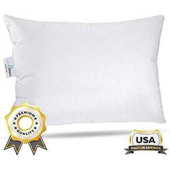 Amazon.com: 100% Seda de Morera almohada de viaje 12 x 16 en ...