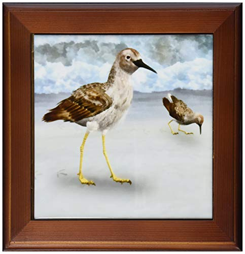 3dRose ft_50431_1 Least Sandpiper Birds on a Beach Framed Tile, 8 by 8-Inch (Renewed)