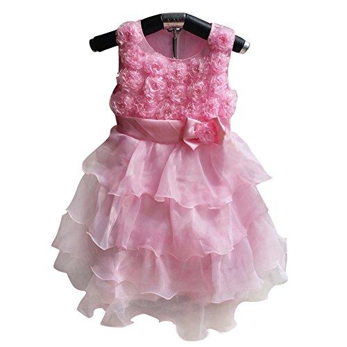 PATTONJIOE Baby Girls Princess Wedding Bow 3D Flower Tutu Layered Skirt Pink