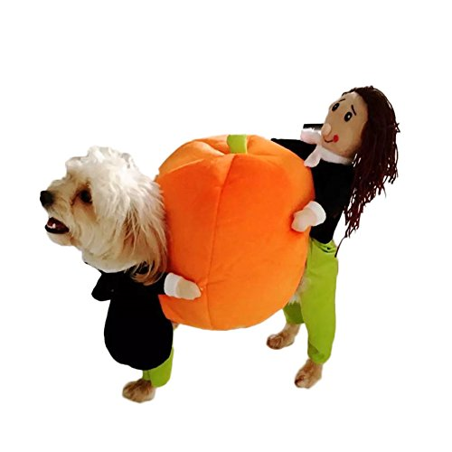 Guinea Pig Dog Costume (WeeH Dog Costume Halloween Clothes Cat Costumes Pets Ride-on Clothing Funny Cosplay Accessories for Animal Doggy Kitty Rabbits Pig Piggy Christmas Gift, Pumpkin, S)
