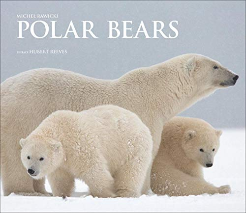 (Polar Bears: A Life Under Threat)