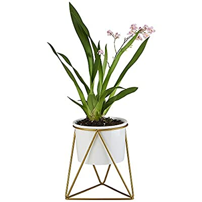 flowerplus Planter Pot Indoor, 4.33 Inch White Ceramic Medium Succulent Cactus Flower Plant Round Bowl with Metal Stand Holder and Plants Sign for Indoors Outdoor Home Garden Kitchen Decor (Golden)