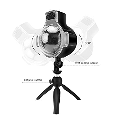 LED Snow Scene Light, DDSKY Outdoor Remote/Manual Control LED Projector Light with Tripod Spike Support Timer/Speed/Flash Control for Xmas Snowfall Landscape