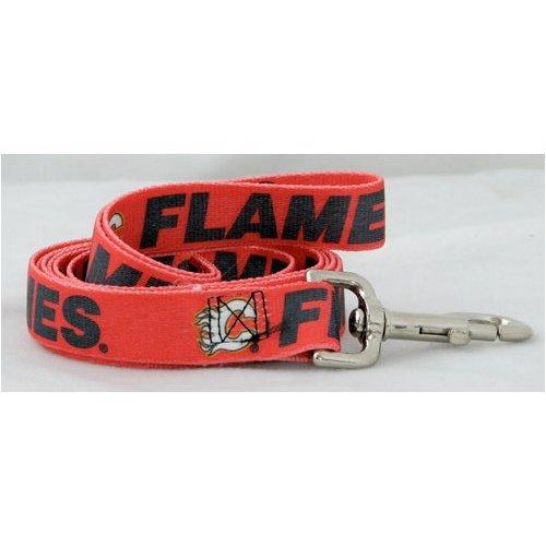 Hunter Mfg. LLP NHL Calgary Flames Pet Lead, Team Color, Medium