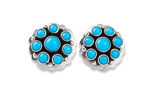 Navajo Silver Turquoise Cluster Post Earrings Ray (Navajo Silver Turquoise Cluster)
