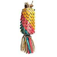 ROSEWOOD Boredom Breaker Woven Wonders Rainbow Pinata Bird Toy, Medium/Large