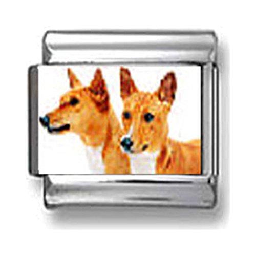 Basenji Dogs Italian charm